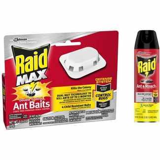 Raid Ant Baits Coupon